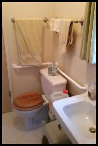 H & H bathroom toilet grab bar