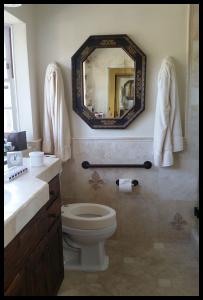 H & H beautiful toilet grab bar