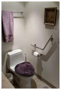 H & H Wedge bar mounted next to toilet
